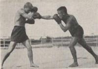 Boxen als Leibesübung, Kampfsport und Selbstverteidigung