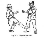 L'art de se defendre dans la rue. Résumé des parties les plus simples et les pratiques de la boxe Francaise, de la lutte, du jeu de la canne et du baton, du maniement du couteau et du poignard