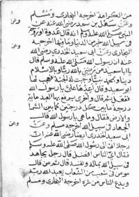 MS Arabe 2829 - Supplément arabe 988  (Escrime à cheval et manoeuvres et feintes à la lance)