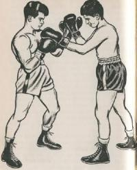 Championship Fighting Explosive Punching and Aggressive Defense