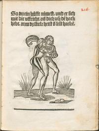 Das Landshuter Ringerbuch